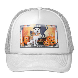 Halloween - border collie - Tywin Gorro De Camionero