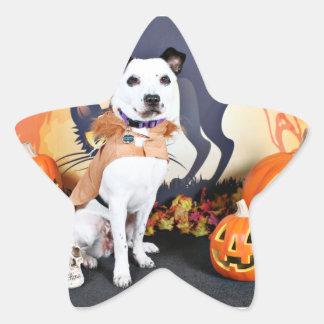 Halloween - border collie - Tywin Pegatinas Forma De Estrellaes Personalizadas