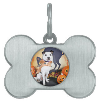 Halloween - Border Collie - Tywin Pet Tag