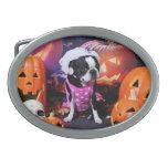 Halloween - Boston Terrier - Georgia Hebilla Cinturón Oval