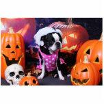 Halloween - Boston Terrier - Georgia Photo Cutouts