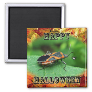 Halloween Box Elder Bug Coordinating Items 2 Inch Square Magnet