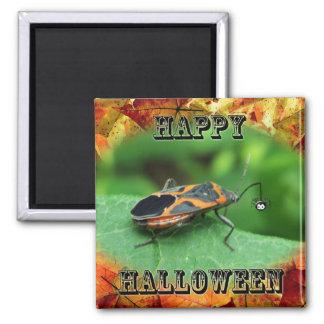 Halloween Box Elder Bug Coordinating Items Magnet