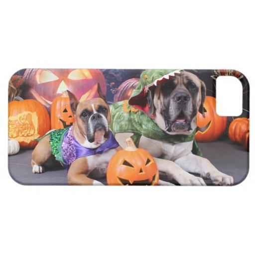 Halloween - boxeador - Roxy y mastín - Lach iPhone 5 Case-Mate Cárcasa