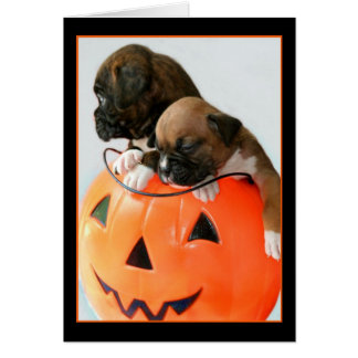 Halloween Boxer puppies greeting card