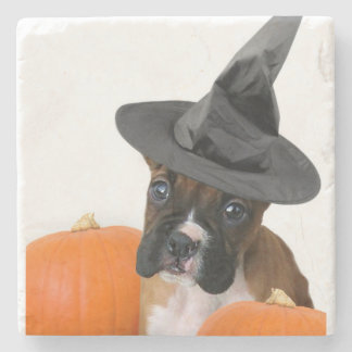 Halloween boxer puppy stone coaster