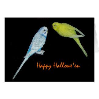 Halloween budgies card