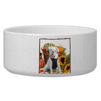Halloween bulldog bowl