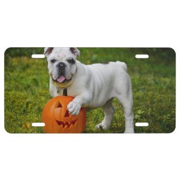 Halloween Themed Halloween bulldog license plate