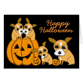 Halloween Card Chihuahua Puppy 4