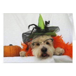 halloween card, humor, dog cute, witch,pumpkin, card