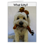 halloween card, humor, dog eats cat, guilty dog, greeting card