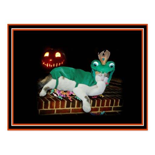 Halloween Cat is Gettin' The Goods! Postcards