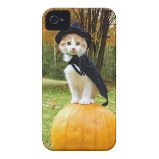 Halloween Cat On A Orange Pumpkin Case-Mate iPhone 4 Case