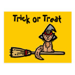 Halloween Cat on Broomstick Post Cards