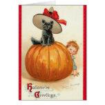 Halloween Cat on Pumpkin - Greeting Card