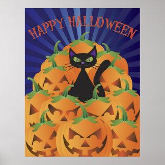Halloween Cat with Pumpkins Poster