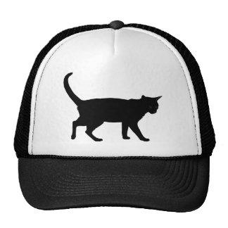 Halloween cats! hats