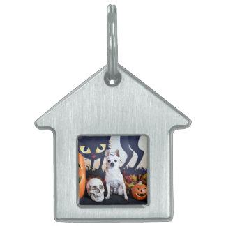 Halloween - Chihuahua - Chulo Pet ID Tags