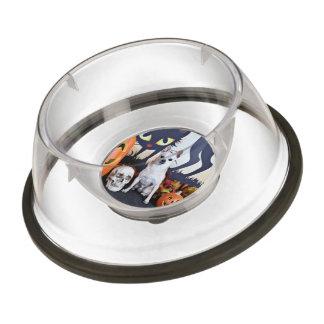 Halloween - Chihuahua - Chulo Pet Bowl