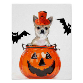 Halloween chihuahua dog poster