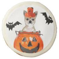 Halloween chihuahua dog sugar cookie