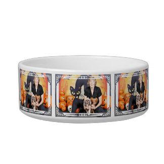 Halloween - Chihuahua Peanut - Shih Tzu - Gabby Cat Bowls