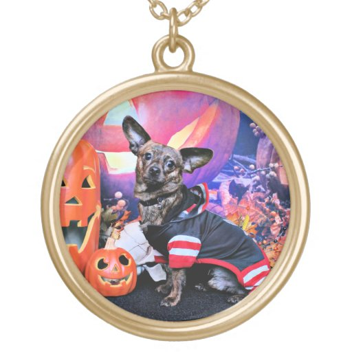 Halloween - Chiweenie - Sherekhan Grimpola
