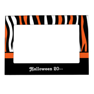 Halloween colors zebra stripes black and orange magnetic picture frame