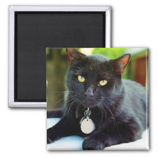 Halloween-Costume 2 Inch Square Magnet
