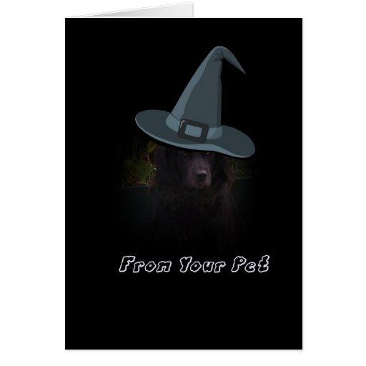 Halloween de su tarjeta del perro casero
