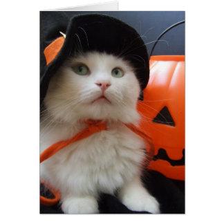 Halloween de un gato tarjeta de felicitación
