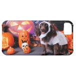 Halloween - Deutscher Wachtelhund - Matilda