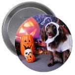 Halloween - Deutscher Wachtelhund - Matilda Pins