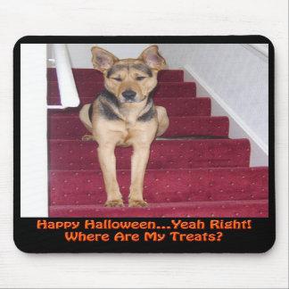 Halloween Dog and No Treats Mouse Pad