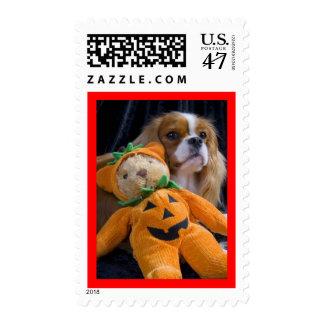 Halloween dog - cavalier king charles spaniel postage