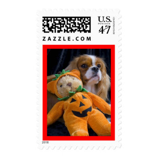 Halloween dog - cavalier king charles spaniel postage stamp