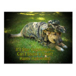 Halloween Dog in Camouflage Post Card