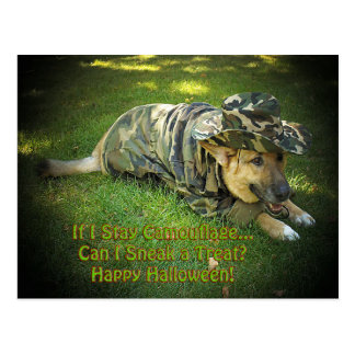 Halloween Dog in Camouflage Postcard