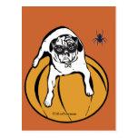 Halloween dog on pumpkin with spider Postcard