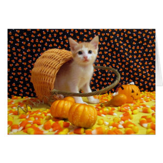 Halloween dulce de Annie (4380) Tarjeta De Felicitación