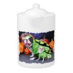 Halloween  English Bulldog Spike - Chihuahua Gizmo
