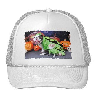 Halloween  English Bulldog Spike - Chihuahua Gizmo Hat