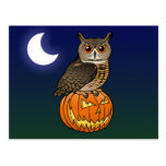 Halloween Eurasian Eagle Owl Postcard