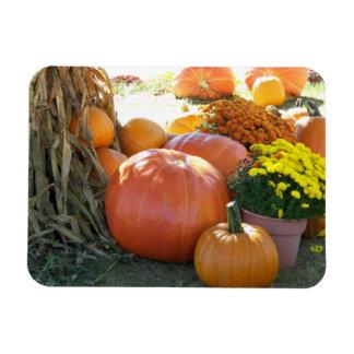 Halloween Fall Scene Magnet