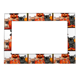 Halloween French Bulldogs Magnetic Picture Frame