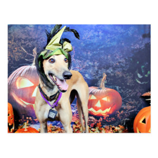 Halloween - galgo - Pena Tarjetas Postales