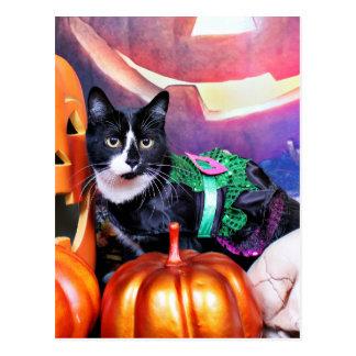 Halloween - gato - margarita tarjetas postales