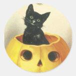 Halloween, gato negro dentro de una calabaza etiquetas redondas