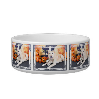 Halloween - Golden Labrador - Lola Cat Water Bowls